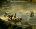 State & Province Life Science Genealogy Posters.