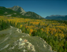 Destination Alberta, your one-stop informational resource.